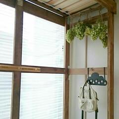 遊び場/ドライフラワー/和室/ロフトベッド/ロフト/DIY/... 和室に作ったロフトの下からの図 アジサイ…