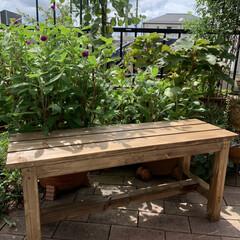 ベンチ/カインズ/DIY カインズのDIY教室でベンチを作りました…
