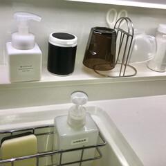 インテリアシート/一条工務店/輪ゴム収納/ガムの容器/100均/収納/... 輪ゴム収納ケースをキッチンに置いてみた。