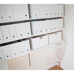 ファイルボックス/パントリー収納/LIMIAインテリア部/収納/シンデレラフィット/住まい/...  ゴミ袋はケース下に入れ込んで こんな感…