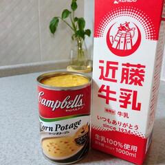 停電/牛乳/缶詰/備蓄/ご飯 長期間の停電になったら、冷蔵庫の生鮮食品…
