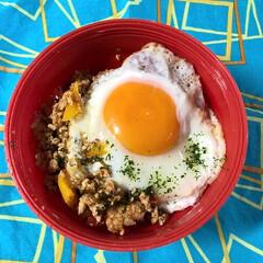 カルディ/アジアン/お弁当/ガパオライス/フード/おうちごはん 外ごはんで人気のあるガパオライス。ペース…