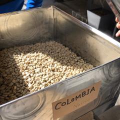 ウガンダ/珈琲 豆を選び、炒る、挽く、淹れて味わう。