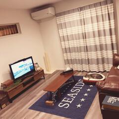 ねこ♡/ニトリ ニトリでカーペット購入♡ size.co…