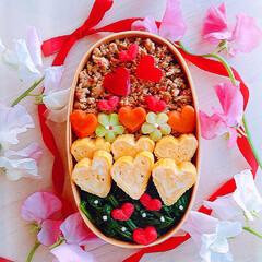 そぼろ丼/わっぱ弁当/わっぱ/バレンタイン2020/お弁当 バレンタイン弁当♡