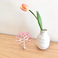 シーズンツリー/lovi/花のある生活/花のある暮らし/インテリア/オマジオ/... チューリップとLoviの春らしいシーズン…