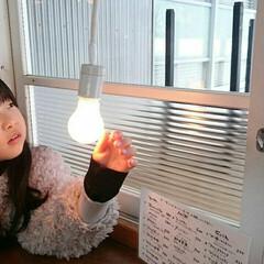 shozoCafe/Cafe/旅行/おでかけワンショット お正月に行った那須のshozoCafe。