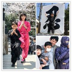 忍者/京都/映画村/太秦/伊賀より甲賀派 今日は京都の映画村で忍ってます。 そして…