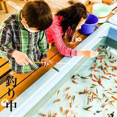 釣り/子供/春休み/息子/娘/ちょうどいい/... 今日は久々にお休み頂いて『釣り中』。(*…