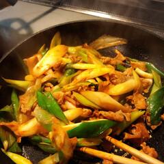 美味しいな/簡単美味しい/長ネギたくさん/ピリ辛 材料2つ♪ネギと豚肉の豆板醤炒めです〜。…