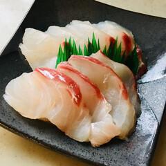 釣ったお魚/美味しい/お刺身/鯛 お刺身〜〜♡ 最高‼️