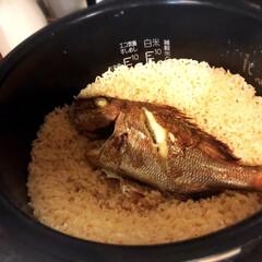 旬なモノ/美味しい/釣り/鯛めし/おうちごはん 旦那が釣った今年の初物の鯛で鯛めし♪ 小…
