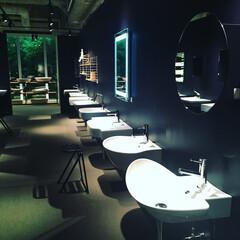 手洗い/南青山/サンワカンパニー/インテリア/建築 サンワカンパニーショールーム🌟