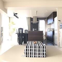 バービースタイル(整理収納アドバイザー)/我が家の暮らし/我が家/おうち/キッチン/インテリア/... 一番ほっとするのが我が家。  昔は散らか…