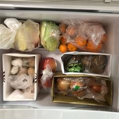 紙袋収納/野菜庫/整理収納アドバイザー/冷蔵庫/野菜室/野菜の管理/... お客様宅野菜庫アフター。野菜のクズで汚れ…