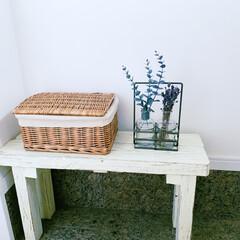 ベンチDIY/ベンチ/玄関/インテリア/玄関あるある/雑貨/... 玄関にdiyしたベンチ。家を建てた時に余…