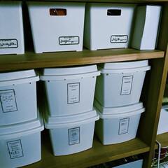 パントリー収納/パントリー/お薬収納/ダイソー/タッパー収納/収納/... 我が家のお薬収納。 パントリーの棚に、ダ…