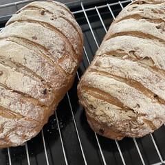 手作りぱん/パン/おうちカフェごはん/おうちカフェ/limiaキッチン同好会/暮らし おうちでカフェやパン屋さんみたいな全粒粉…