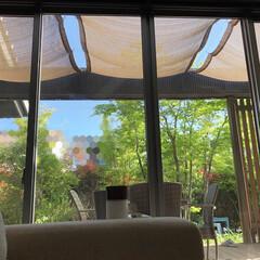 築10年/人工木デッキ/オーニング/サンシェード/アウトドアリビング/ウッドデッキ/... 我が家のウッドデッキ上部。日差しも強くな…
