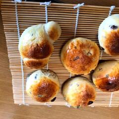 コーンパン/レーズンパン/パンづくり パン作り〜。  なかなか上手く出来なくて…(4枚目)