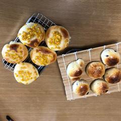 コーンパン/レーズンパン/パンづくり パン作り〜。  なかなか上手く出来なくて…(5枚目)