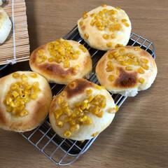 コーンパン/レーズンパン/パンづくり パン作り〜。  なかなか上手く出来なくて…(3枚目)