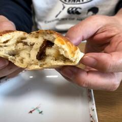 コーンパン/レーズンパン/パンづくり パン作り〜。  なかなか上手く出来なくて…(2枚目)