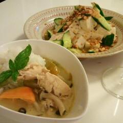 夏野菜/はらぺこグルメ グリーンカレー ベランダガーデンバジル添…(2枚目)