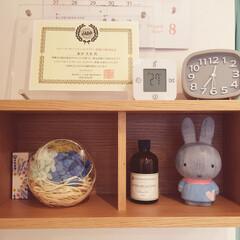 サロン/無印良品 サロンの飾り棚です。 無印良品の物を使用…