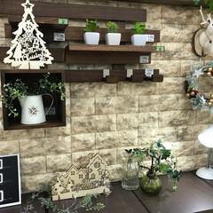 リノベーション/壁に付けられすのこ/クッションレンガ/クリスマス/島忠ホームズ小平店