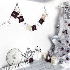 クリスマスツリー/クリスマスインテリア/カインズ/ダイソー/キャンドゥ/セリア/... クリスマスインテリア  今年はネコが家族…