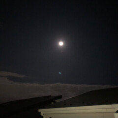 夜空 中秋の名月 たまにはゆっくり空を見上げて…(1枚目)