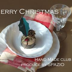 クリスマスパーティー/木の実 おしゃれなテーブルコーディネートでクリス…