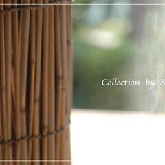 葦簾/日本の夏 葦簾は夏の強い日差しを遮る、我が家の必需…