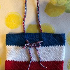 バッグインバッグ/かぎ針編み/雑貨/ハンドメイド/100均 トリコロールカラーのバッグインバッグ作り…(2枚目)