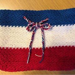 バッグインバッグ/かぎ針編み/雑貨/ハンドメイド/100均 トリコロールカラーのバッグインバッグ作り…(1枚目)
