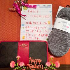 感謝/母の日/バラ園/山下公園/令和の一枚/至福のひととき 長男と彼女、次男からの母の日のプレゼント…