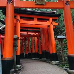 御朱印/京都の旅/⛩巡り/女2人旅 先週末、ネイリストのお友達と京都の⛩巡り…(2枚目)