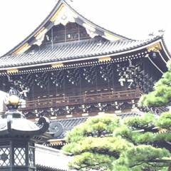 御朱印/京都の旅/⛩巡り/女2人旅 先週末、ネイリストのお友達と京都の⛩巡り…(8枚目)