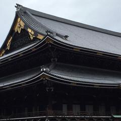 御朱印/京都の旅/⛩巡り/女2人旅 先週末、ネイリストのお友達と京都の⛩巡り…(7枚目)