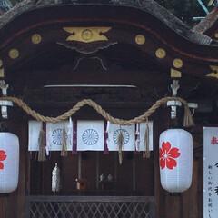 御朱印/京都の旅/⛩巡り/女2人旅 先週末、ネイリストのお友達と京都の⛩巡り…(4枚目)
