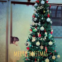 感動する娘ちゃん/大きなツリー/飾り付け/クリスマス/雑貨/インテリア