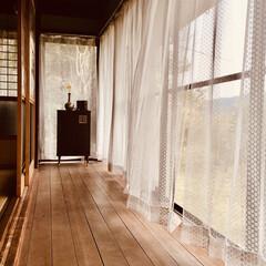 カーテン洗濯/縁側 古い家なんだけど、カーテンを洗濯。 窓を…