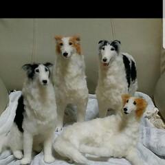 羊毛フェルト/犬/ハンドメイド/ペット/柴犬/ボルゾイ 過去に作った作品のお気に入り ①柴犬 花…(2枚目)