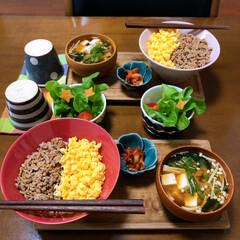どんぶり/和食ご飯/ふたりごはん/おうちごはん/セリア/無印良品/... 二色丼。 ただ単に緑の野菜を書い忘れただ…