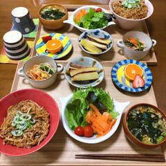 どんぶり/和食ご飯/ふたりごはん/おうちごはん/セリア/100均/... もやし丼。 簡単で美味しくって大好きだけ…