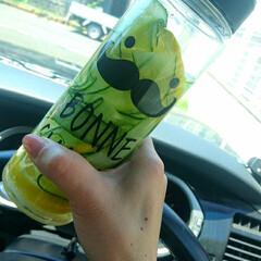 レモン/きゅうり/ドリンクボトル/ドリンク/マイボトル/デトックスウォーター/... 夏の思い出♡♡ マイボトルでしごとに持っ…
