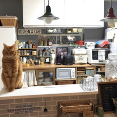 カフェ風インテリア/カフェ風/キッチン背面収納/DIY/リメイク/リメイクシート/... *2020.4.27* こんばんは(*´…