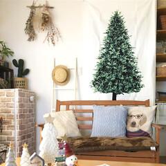 楽天/トーカイ/ツリータペストリー/クリスマスツリー/ツリー/クリスマス雑貨/... *2019.12.5* 今年はクリスマス…