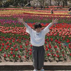 春のフォト投稿キャンペーン/LIMIAおでかけ部/おでかけ/おでかけワンショット 満開のチューリップにテンションMAX︎💕…(1枚目)